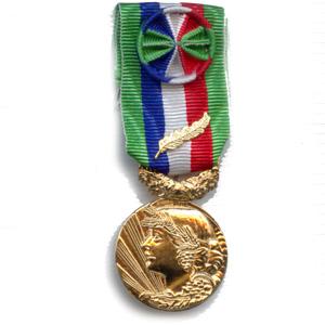 MEDAILLE HONNEUR AGRICOLE 35 ANS - bronze doré