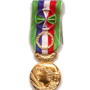 MEDAILLE HONNEUR AGRICOLE 40 ANS - bronze doré