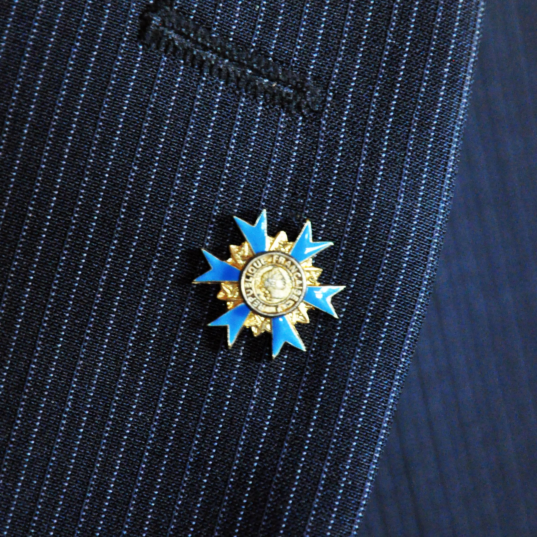 INSIGNE PINS ORDRE NATIONAL DU MERITE Officier