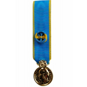 Médaille Jeunesse etSports OR Reduction