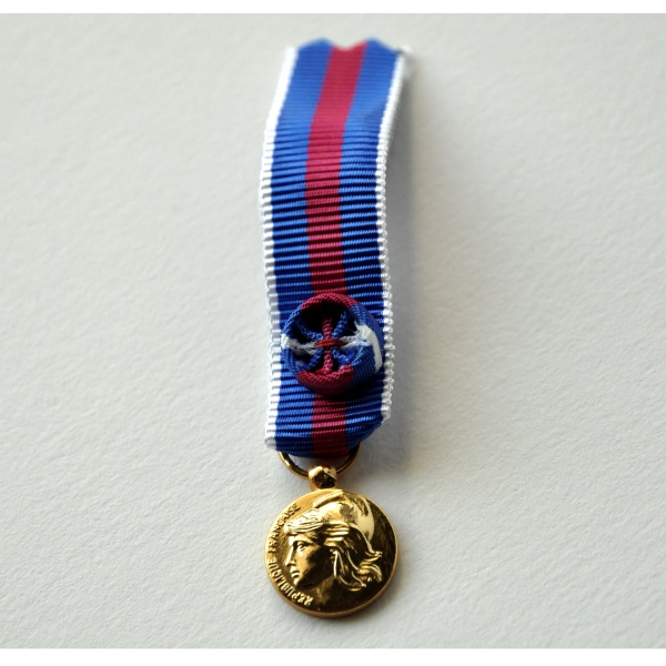 MEDAILLE SVM REDUCTION SERVICES MILITAIRES VOLONTAIRES or