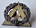 BREVET SECOURISME BRANCARDIER échelon bronze