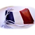 GUIRLANDE FRANCE 10M Pvc