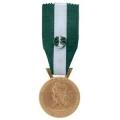 Médaille régionale départementale et communale 35 ANS OR