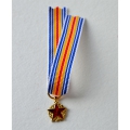MEDAILLE DES BLESSES reduction miniature