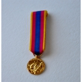MEDAILLE DE LA DEFENSE NATIONALE or - reduction miniature