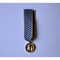 MEDAILLE DE RECONNAISSANCE DE LA NATION TRN reduction miniature