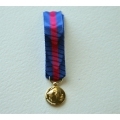 MEDAILLE SVM REDUCTION SERVICES MILITAIRES VOLONTAIRES bronze