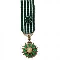 Médaille ARTS ET LETTRES OFFICIER miniature