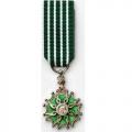Médaille ARTS ET LETTRES CHEVALIER miniature