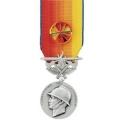 médaille des SAPEURS POMPIERS SERVICES EXCEPTIONNELS ARGENT