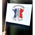 drapeau du centenaire 14-18 - papier 15x20cm